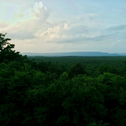 While on safari in the Barnawapara Wildlife Sanctuary - the view from the watchtower.